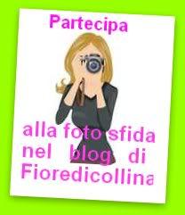 foto sf