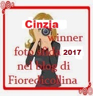 winner fs2017